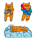 Red cats. Set of red vector cats Royalty Free Stock Photos