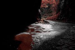 Red cavern deep whater nature stock photography
