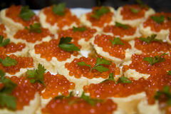 Red caviar. With parsley on canape stock photos