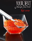 Red Caviar Royalty Free Stock Photos
