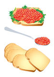Red caviar. Vector illustration of a sandwich and a spoon with red caviar Royalty Free Stock Images