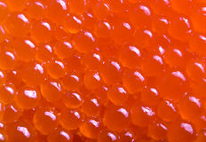 Red caviar. Berry close up Royalty Free Stock Image