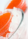 Red caviar. In ice close up Royalty Free Stock Image