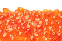 Red caviar background. Background from red caviar on a white stock images