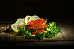 Red caviar and black bread. Still life with red caviar, black bread and fresh herbs Royalty Free Stock Images