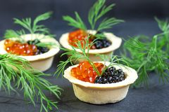 Red caviar and black caviar are in tartlets royalty free stock photography