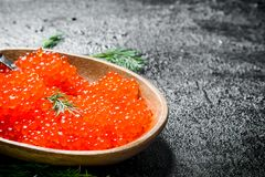 Red caviar in the bowl. On black rustic background stock photography