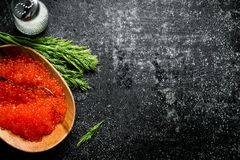 Red caviar in a bowl with salt and dill. On black rustic background stock photo