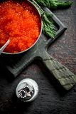 Red caviar in bowl with spoon, dill and salt. On rustic background royalty free stock photo