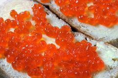 Red caviar with bread and butter Stock Images