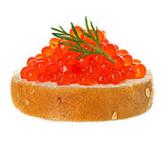 Red caviar with bread Stock Photo