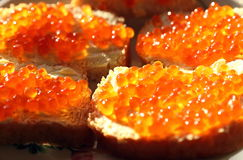 Red caviar with bread and oil Royalty Free Stock Photos