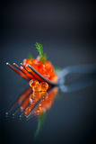 Red caviar on a fork Royalty Free Stock Photography