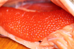 Red caviar, fresh, which only get more fish Royalty Free Stock Photos