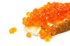 Red caviar on the grain bread. Red caviar on the grain bread isolated on a white background Stock Photos