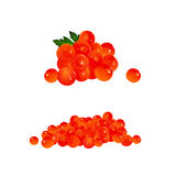 Red Caviar,  Illustration Stock Images