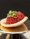 Red caviar. Image is posed on dark background Royalty Free Stock Photo
