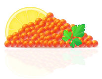 Red caviar with lemon and parsley vector illustration Royalty Free Stock Image