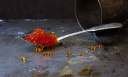 Red caviar in an old silver spoon black moody background metal Stock Photo