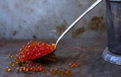Red caviar in an old silver spoon black moody background metal Royalty Free Stock Images