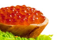 Red caviar on a piece of bread Stock Photo