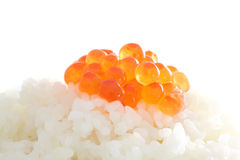 Red caviar on rice in white background Royalty Free Stock Photography