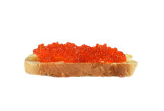 Red caviar on sandwich Stock Photography