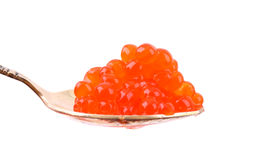 Red caviar on a spoon. Red caviar on a silver spoon. White background Royalty Free Stock Photo