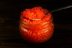 Red caviar in a spoon above the glass jar. Red caviar in spoon above the glass jar Royalty Free Stock Images