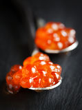 Red caviar in spoon closeup Royalty Free Stock Photo