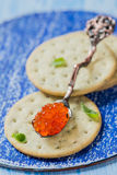 Red caviar in spoon on crackers Stock Images