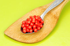 Red caviar in the spoon. Royalty Free Stock Photography