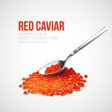 Red caviar in a spoon over blue background. Vector Stock Photo