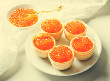 Red caviar tartlets, appetizer canapes on bright background Stock Image