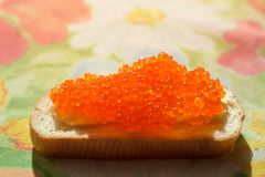 Red caviar on a white bread. On a table Stock Images