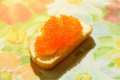 Red caviar on a white bread. On a table Stock Photos