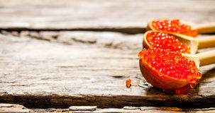 Red caviar. In a wooden spoon. On a wooden background. Free space for text Stock Image