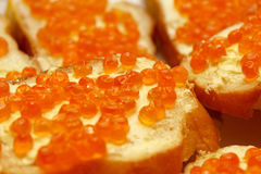 Red caviare sandwich. Close-up of red caviare sandwich Stock Photography
