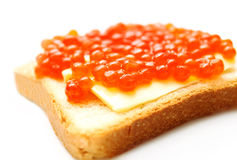 Red caviare sandwich on white. Closeup of red caviare sandwich on white Stock Photography
