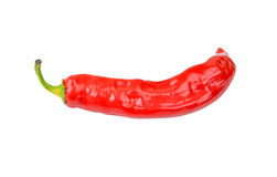 Red cayenne chili pepper Royalty Free Stock Images