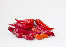Red cayenne pepper Royalty Free Stock Photo