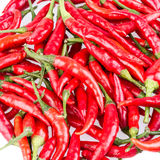 Red Cayenne pepper Royalty Free Stock Image
