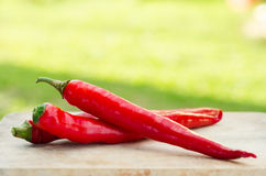 Red cayenne pepper on wood table Royalty Free Stock Photos