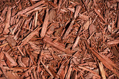 Red Cedar Mulch. A detailed close up of red coloured cedar mulch.  A great texture image for a background or overlay Stock Images