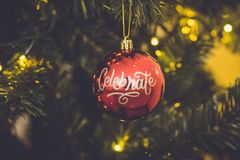 Red Celebrate Print Baubles Hang on Green Christmas Tree Stock Image