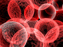 Red cells Royalty Free Stock Photo