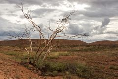 Red center in the Australian desert, outback in Northern Territory, Australia stock images