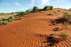 The Red Centre, Australia Royalty Free Stock Photo