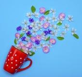 Of red ceramic mug with white polka dots randomly poured flower Stock Images