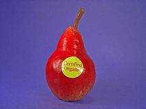Red Certified Organic Pear. A red European certified organic pear stock photo